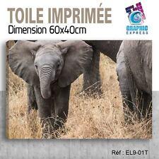 60x40cm -TOILE IMPRIMÉE - TABLEAU  POSTER DECO -ELEPHANT FELIN - EL9-01T