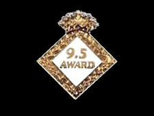 9.5 Award Gymnastics Lapel Pin - 8 Crystals In Crown - Congratulations!