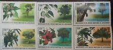 O) 2019 Botanical Environmental Vertient - Tree - Ceiba Pentandra - Mango Mang