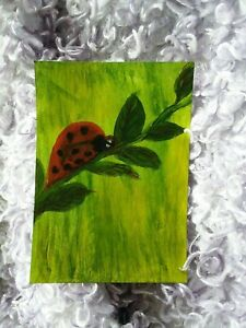 painting LADYBUG art trading card ACEO insect NEW science wild animal MOM bug