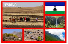 LESOTHO, SOUTH AFRICA - SOUVENIR NOVELTY FRIDGE MAGNET - NEW - GIFT / XMAS - NEW