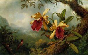 ZWPT771 modern landscape flowers bird 100% hand-painted oil painting art Canvas
