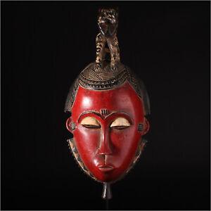 11640 Fine Baule Mask Elfenbeinkuste Metalldisplay Inclusive