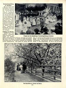 Der Sommertagsfestzug in Bruchsal Obstbaumblüte in Werder bei Berlin von 1910