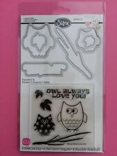 Sizzix 658205 Framelits Six Clear Stamps & Dies Autumn Owls Brand New