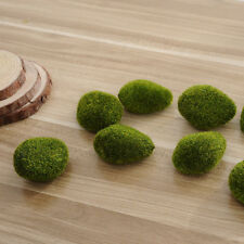 New Moss ball 5Pcs Marimo Plant Cladophora Underwater Fish Tank Ornament