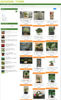 BONSAI TREE WEBSITE WITH 1 YEARS HOSTING & DOMAIN NAME - EASY TO RUN BUSINESS