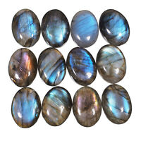 12 Pcs Natural Labradorite Blue Fire High Quality Flashy Cabochon Gemstones Lot