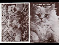 """UXEGNEY / DARNIEULLES (88) ELEVAGE de CHATS PERSANS """"Jacqueline LANTENOIS"""""""