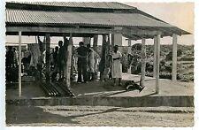 CARTE POSTALE PHOTO LIOT / POSTCARD / CAMEROUN NGAOUNDERE ABATTOIRS