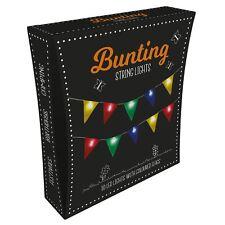 Fizz Bunting String Light Camping Festivals 10 LEDs Coloured 2m