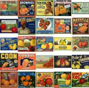 No Frills Photo CD 8000 Pics of posters labels ads more