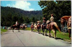 "North Carolina Postcard ""Horseback Riding at FONTANA VILLAGE RESORT"" 1963 Cancel"