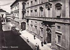 PADOVA - Università - Foto Cartolina