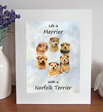 "Norfolk Terrier 'Life is Merrier' 10"" x 8"" Mounted Print Picture Image Fun Gift"