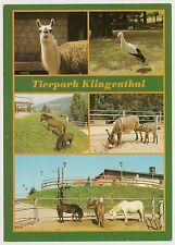Tierpark Klingenthal 1983, Lama, Storch, Esel, Pony