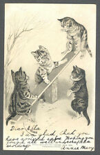 Cats, Cats Playing with a Seesaw, Cute Old Embossed Postcard Pre. 1905