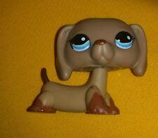 Littlest pet shop dachshund teardrop Blue Eyes #518 Rare