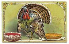 ANTIQUE THANKSGIVING POSTCARD TOM TURKEY PUMPKIN PIE CRANBERRY SAUCE BOWL 1907