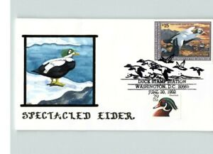 Hand Painted DUCK STAMP, Spectacled EIDER $15.00 Dept. of the Interior stamp, 19