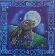 Lisa Parker Lienzo Arte Impresión Placa De Pared Luna mirando liebre Wicca 28 X 28 Cm