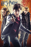 """HARRY POTTER TRIO - HARRY HERMIONE RON - 91 x 61 cm 36"""" x 24"""" CHARACTER POSTER x"""