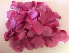 100 x Rosenblätter mauve  Streudeko -Tischdeko