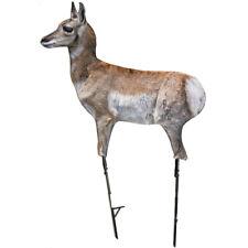 Montana Decoy Antelope Fawn