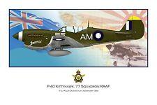 WWII WW2 RAAF P-40 Kittyhawk Aviation Art Profile Photo Print - Series 2 #1 of 3