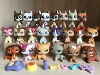 Littlest Pet Shop LPS Collie #363 Great Dane Dog Short hair Cat #391 4 Random