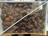 Fresh Dates - Medjool  Dates, Natural Grown - 11 LBS Sealed Box -From California