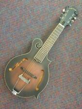 Gold Tone Mando-Guitar Model F-6 Plays like Guitar-New with Case and Shop Setup