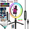 """10"""" RGB Beauty Fill Light LED Ring w/Tripod Stand Dimmable Kit for Phone Stream"""