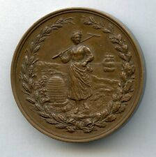 Bronze table medal Mitavskiy Agricultural Society For diligence Imperial Russia