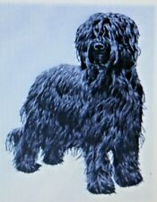 Briard Dog Breed Set Of 2 Hand Towels Embroidered