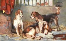 Tuck Dogs by Philip Strellon - American Ymca Overprint Postcard Fox Hounds