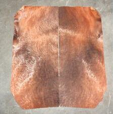 Bog Sequoia Burl Veneer