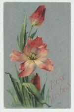 C. Klein, Flowers, Tulips, Stewart & Woolf 6002 Embossed Art Postcard, C042