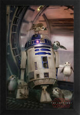 STAR WARS THE LAST JEDI R2D2 WITH BIRD 13x19 FRAMED GELCOAT POSTER EPISODE XIII!