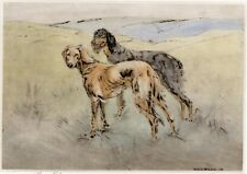 SALUKI GAZELLE HOUND DOG LIMITED EDITION PRINT DRYPOINT ENGRAVING by H Wilkinson