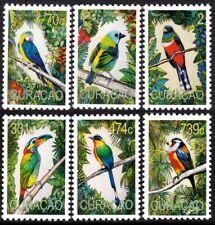 CURACAO 2020 BIRDS OISEAUX VOGEL UCCELLO AVES [#2001]