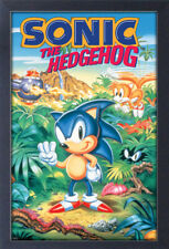 SONIC THE HEDGEHOG 3 13x19 FRAMED GELCOAT POSTER VIDEO GAMES SEGA GIFT NEW FUN!!