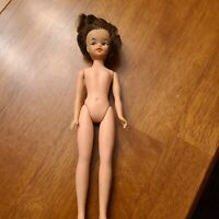 1960s Allied Grands  Doll Tammy clone Marked AE. LORNA