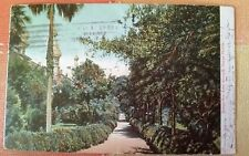 Tampa Bay Hotel Grounds, Tampa, Florida