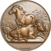 O6370 Médaille Horse Bœuf Cheval Sénateur Dubois SUP