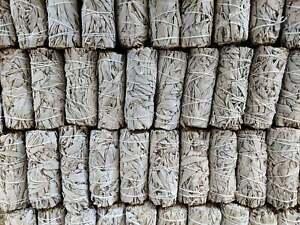 "WHOLESALE 100 California White Sage Smudge Sticks/Wands  4""-5"" Long Free Ship"