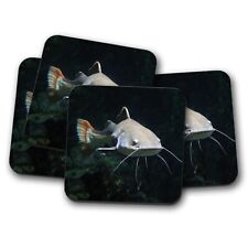 4 Set - Beautiful Redtail Catfish Coaster - Fish Fishing Grand Ocean Gift #12662