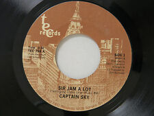Captain Sky 45 ELEMENTARY SCHOOL OF FUNK / SIR JAM A LOT ~ M- to VG++