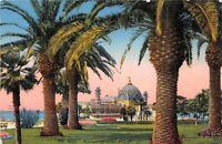 NICE - Palmiers du Jardin Public