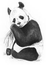 Sketching - Skizzieren - Malen mit Bleistift - Panda Pandabär Bär -   Mini